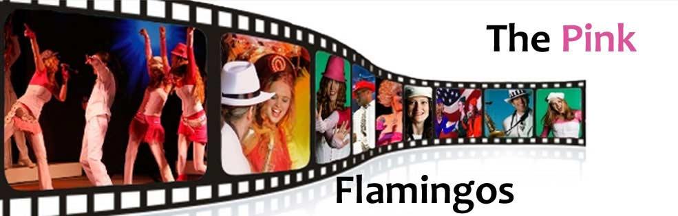Image of PINK FLAMINGOS