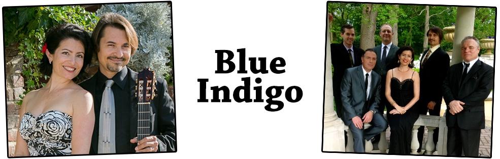 Image of BLUE INDIGO
